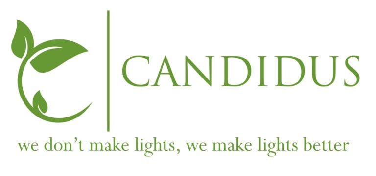 Candidus